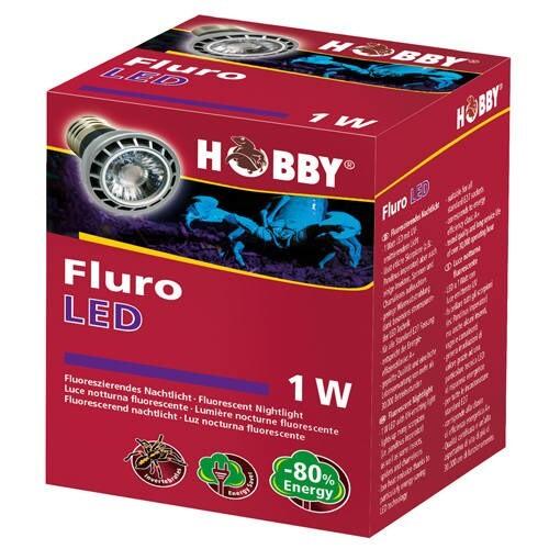LOGO_Fluro LED