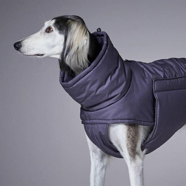 LOGO_Cloud7 Hundebekleidung