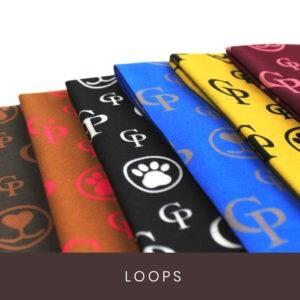 LOGO_Loops – Mensch und Hund vereint
