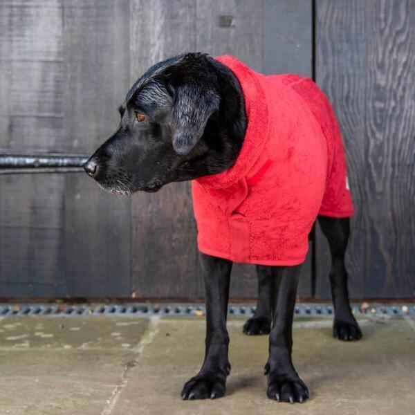 LOGO_Hundetrocknender Mantel