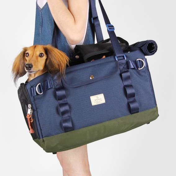 LOGO_Pet Carrier