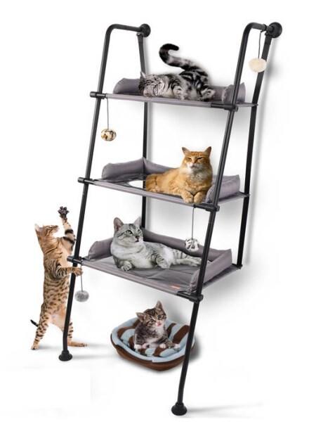 LOGO_PT01 Cat Climbing Ladder