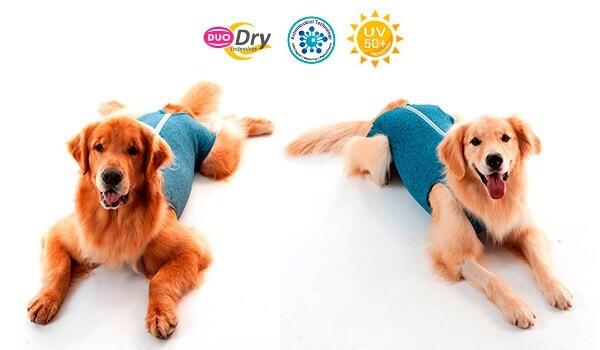 LOGO_Protective and Post Surgical Clothing - Duo Dry Male Dog Castration