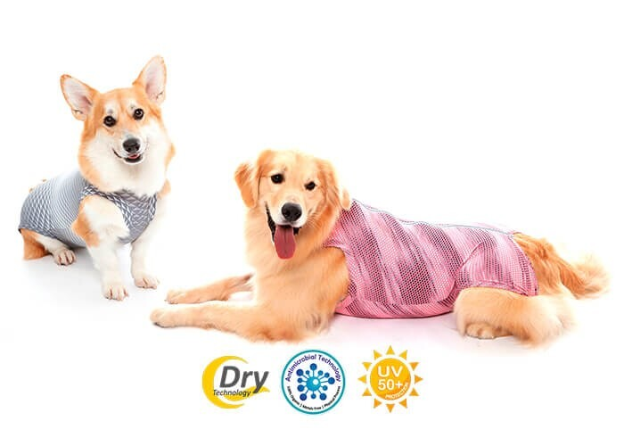 LOGO_Protective Clothing - Ultra Light Color Dogs