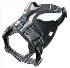 LOGO_Dog harness