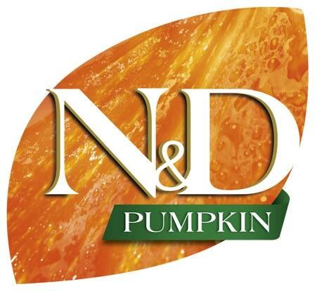 LOGO_N&D Pumpkin