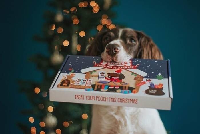 LOGO_Denzel's Christmas selection box