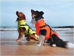 LOGO_dog jacket