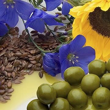LOGO_Fisch-, Pflanzenöle und –fette