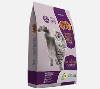 LOGO_Raça Cat Premium