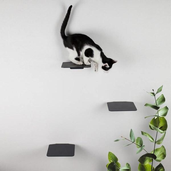 LOGO_STEPS - Cat Stair