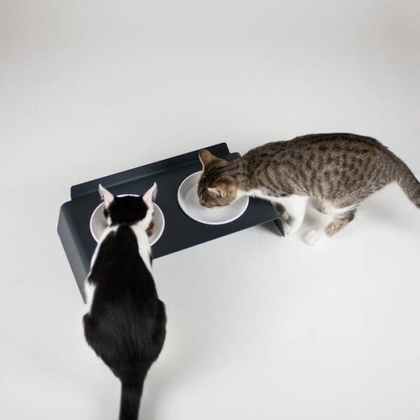 LOGO_DINE - Katzen Futterstation