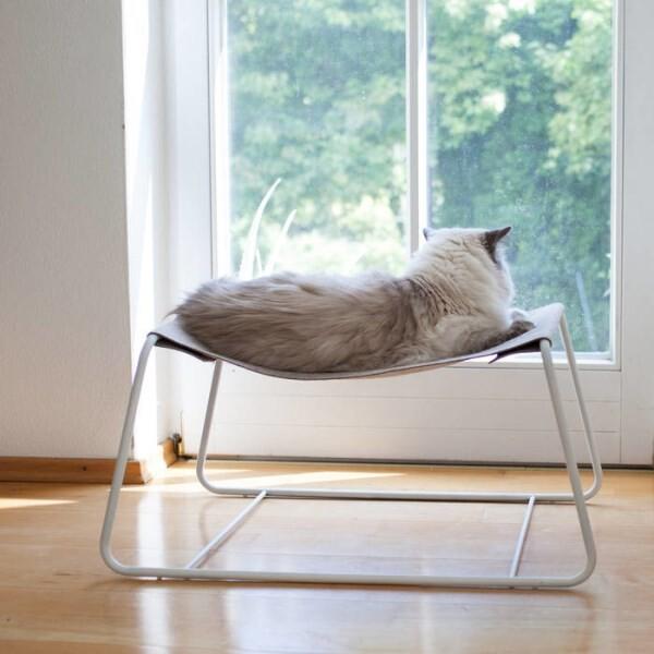 LOGO_FLOAT - Cat Lounge