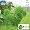 LOGO_AniPlants artificial grass figures