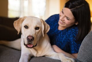 LOGO_Produkte für die Mundhygiene bei Hunden