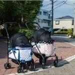 LOGO_Pet Cart