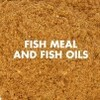 LOGO_Fish meal and fish oils