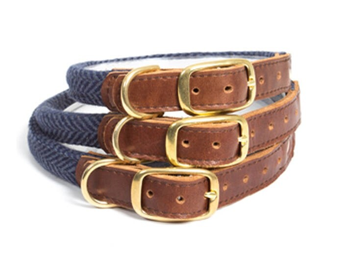 LOGO_Rolled Collars & Leads