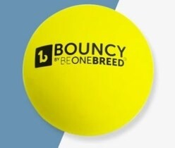 LOGO_BOUNCY BALL