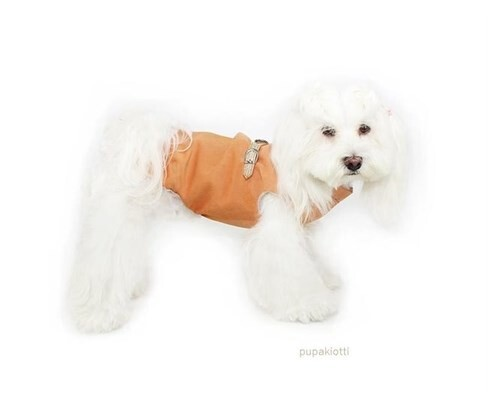 LOGO_P-Key Waterproof coat with integrated harness for dog