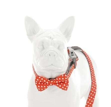LOGO_Red Love Heart Bow Tie