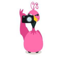 LOGO_Foto & Videoaufnahmen