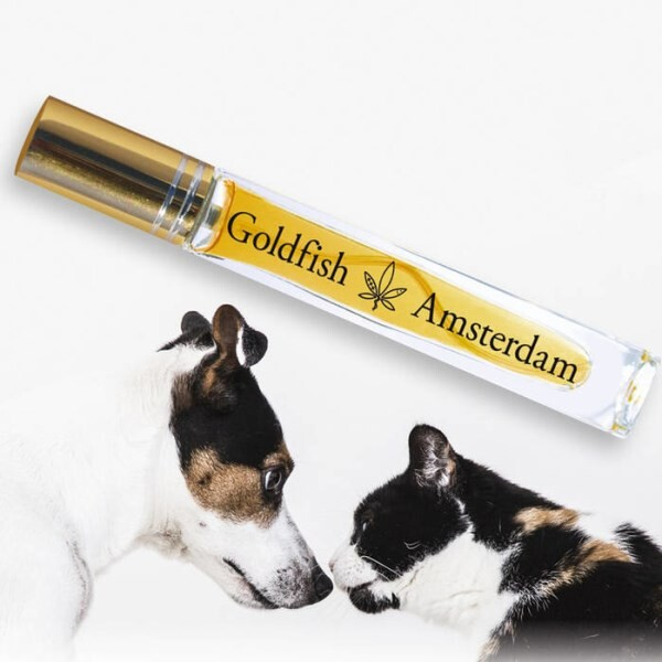 LOGO_GOLDFISH AMSTERDAM 3% CBD SALMON OIL