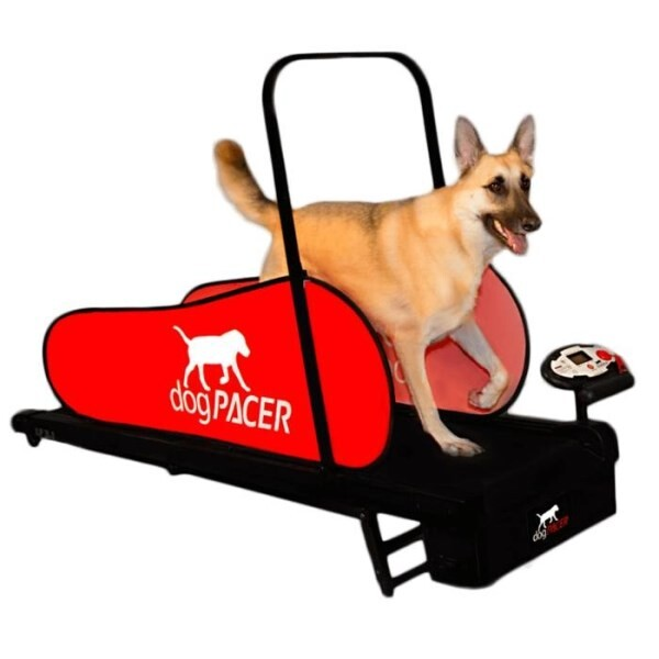 LOGO_dogPACER LF 3.1 Dog Treadmill