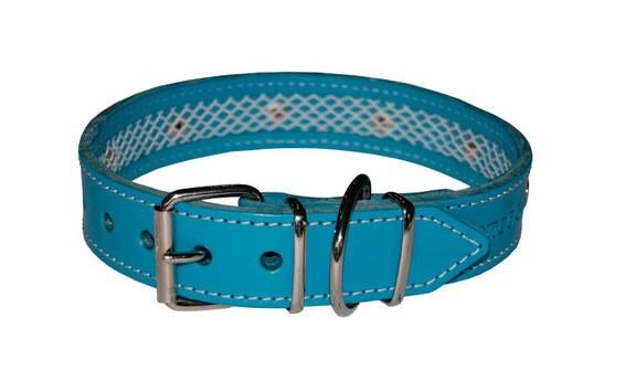 LOGO_Blue Leather