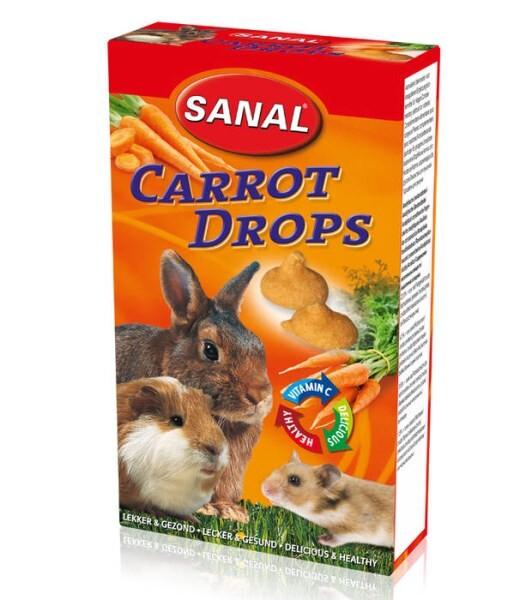 LOGO_Carrot Drops