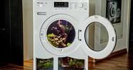 LOGO_Aquarium in a Washing machine