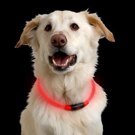 LOGO_NITEHOWL® LED SAFETY NECKLACE