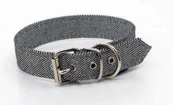 LOGO_Adriatic - Eco Dog Collar