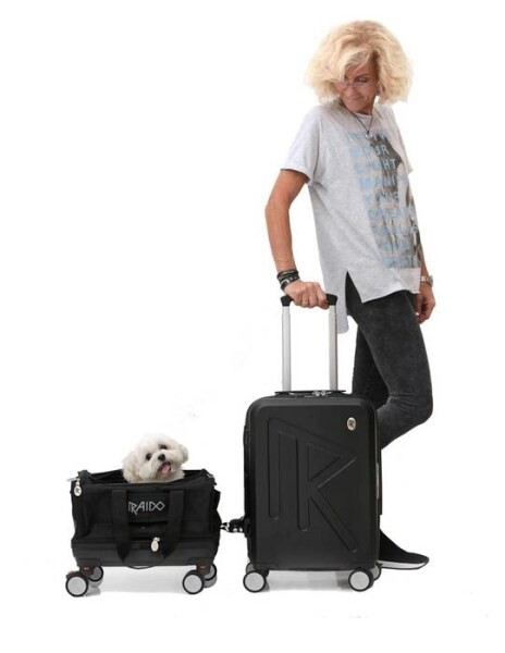 LOGO_RAIDO PET TRAVEL SYSTEM