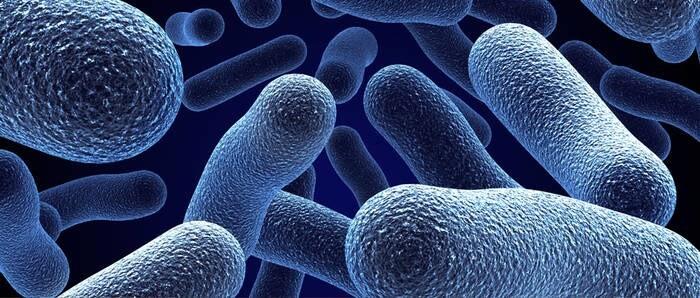 LOGO_Antimicrobials