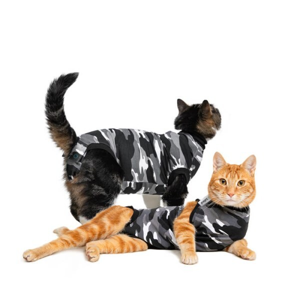 LOGO_Recovery Suit® Katze