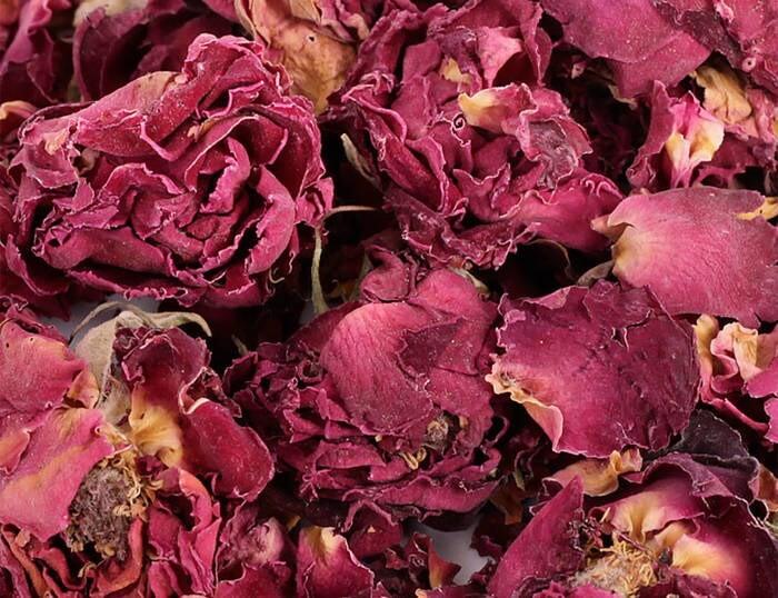 LOGO_Rose Flowers