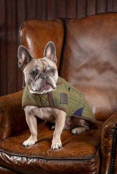 LOGO_Tweed Dog Coat