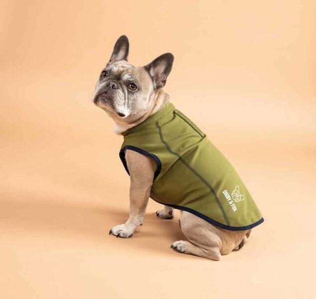 LOGO_Softshell Dog Coat