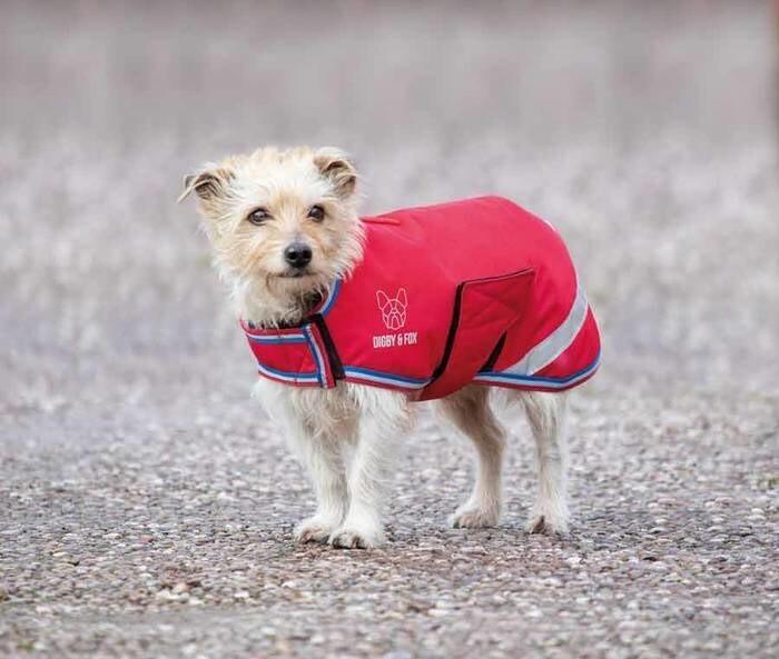 LOGO_Waterproof Dog Coat