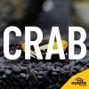 LOGO_Caridina cantonensis sp. – Red Bee Grade S
