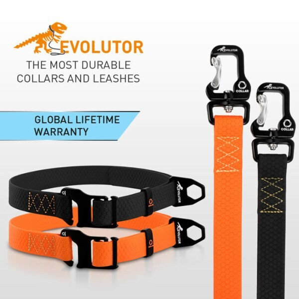 LOGO_Evolutor - the most durable collar and leash