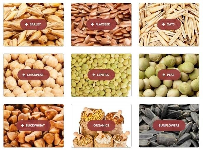 LOGO_Processed Ingredients