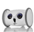 LOGO_Skymee Owl Robot