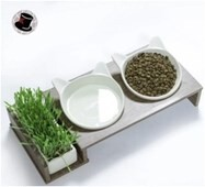 LOGO_Cat bowl+wood shelf+cat grass