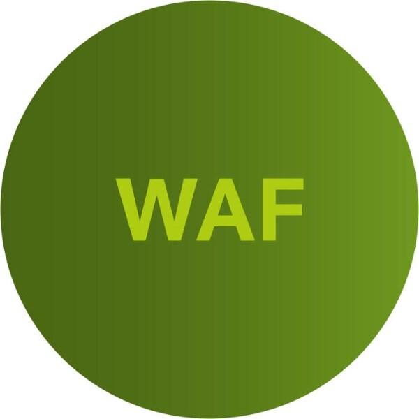 LOGO_Airlock WAF – Schützt Applikationen. Sicher.