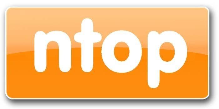 LOGO_ntop und das darauf aufbauende Gesamtpaket nBox