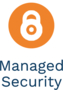 LOGO_Managed Security