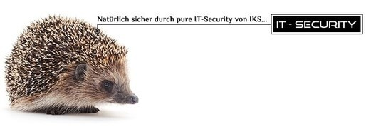 LOGO_IT - Security