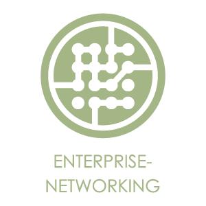 LOGO_Enterprise-Networking